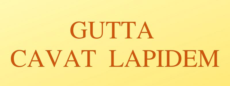 Motivazione Ritrovala Con Questi 6 Aforismi Latini Causa